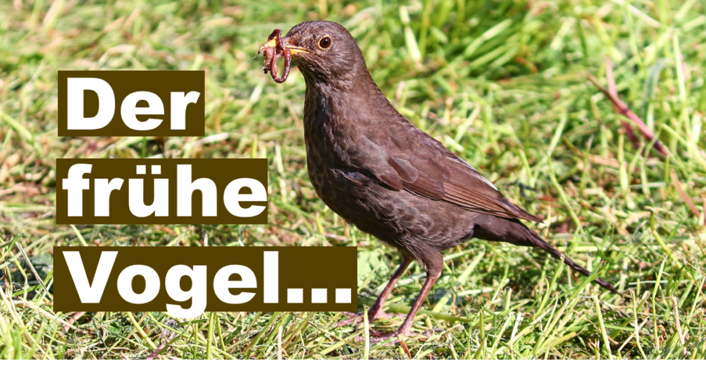 Vogel mit Wurm; Text: Der frühe Vogel