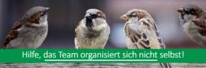 Vögel als Synonym für Team