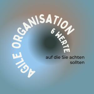 Auge mit Text: Agile Organisation, 6 Werte auf die Sie achten sollten