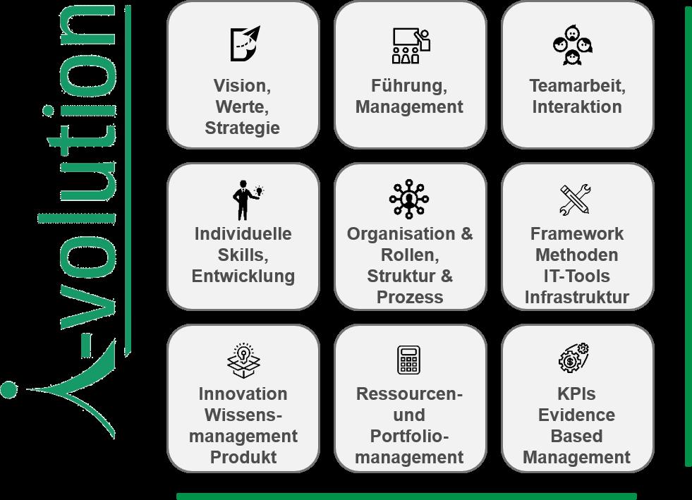 i-volution: Agiles Reifegradmodell, 9 Felder mit Icons